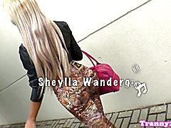 Bigtitted tgirl doggystyled while jerking