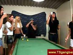 Pool playing tranny babes
