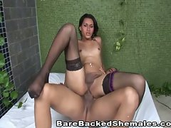 Angel Shemale Ass Fucked Bareback