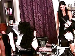 Sissy Inspection.