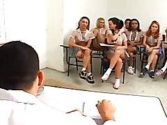 shemale school