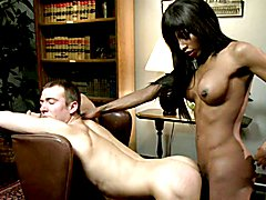 8- Shemales and Women BDSM - Stills and Clips