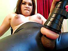 Sexy chubby ts
