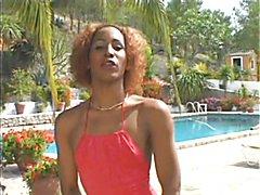 Transsexual Beauty Queens  - clip # 02
