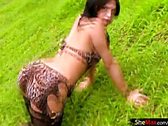 Brunette transsexual in leopard lingerie spreads bubble butt