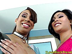 Black les tranny drilling ladyboys tight ass