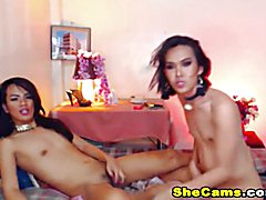 Hot Shemale Duo Giving Anal Pleasure