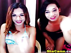 Hot Shemale Couple Steamy Anal Sex on Cam