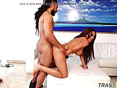Adult transsexual interracially banged from behind