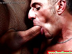 Euro shemales have threeway with lucky guy